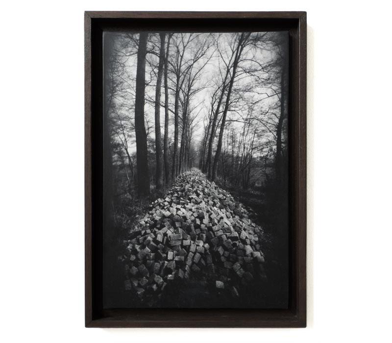 single-photographs-28