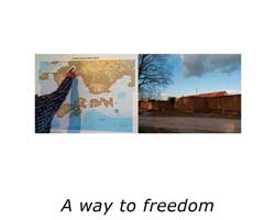way-of-freedom