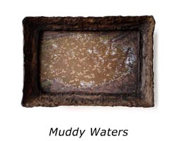 muddy-waters-a